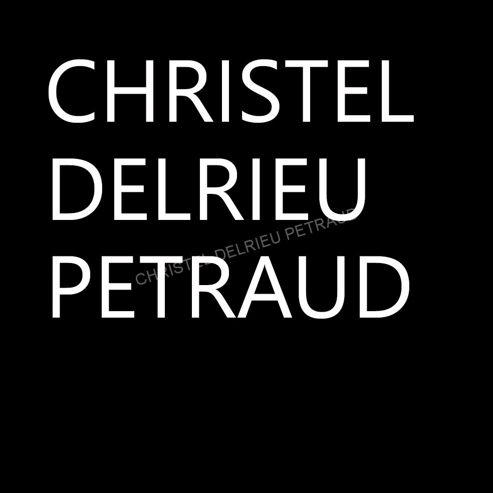 CHRISTEL DELRIEU PETRAUD ARTISTE